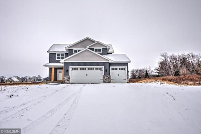916 Gavin Pass, Hudson Twp, WI 54016 (MLS #5198907) :: The Hergenrother Realty Group
