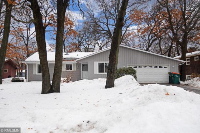 13010 Buchanan Street NE, Blaine, MN 55434 (#5199756) :: The Preferred Home Team