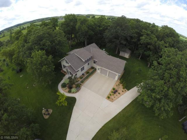 35063 County Road 155, Avon Twp, MN 56310 (#5199991) :: The Sarenpa Team
