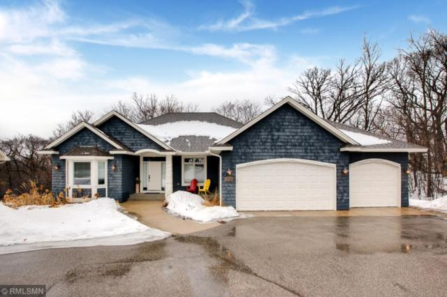15195 Wayzata Boulevard, Minnetonka, MN 55391 (#5200157) :: The Janetkhan Group