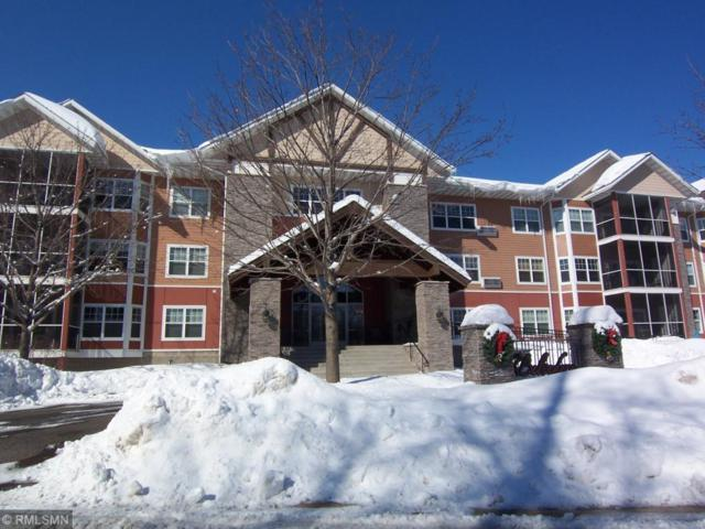 9165 Comstock Lane N #305, Maple Grove, MN 55311 (#5200383) :: The Preferred Home Team