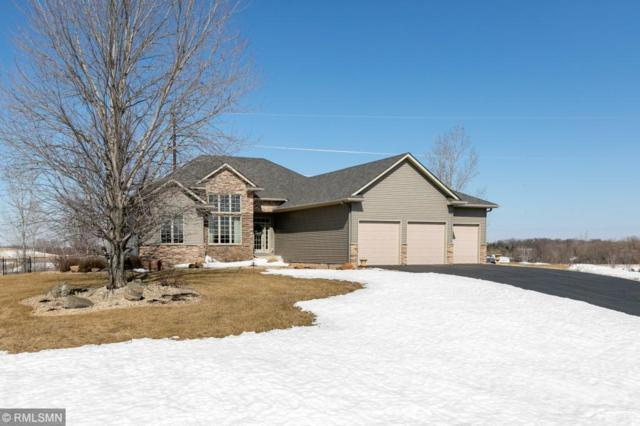4090 Hunters Lane, Cedar Lake Twp, MN 55088 (#5201004) :: The Sarenpa Team
