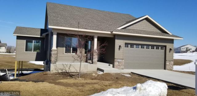 10757 Settlers Lane, Hanover, MN 55341 (#5201760) :: House Hunters Minnesota- Keller Williams Classic Realty NW