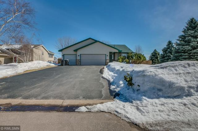 14319 Wintergreen Street NW, Andover, MN 55304 (#5201781) :: The Janetkhan Group