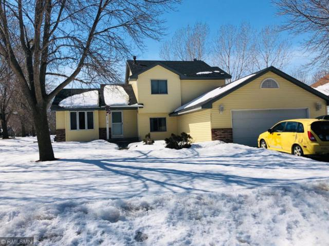 3501 91st Crescent N, Brooklyn Park, MN 55443 (#5201785) :: The Janetkhan Group