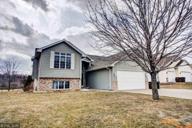 1334 Rolling Oaks Drive, Hanover, MN 55341 (#5201971) :: House Hunters Minnesota- Keller Williams Classic Realty NW