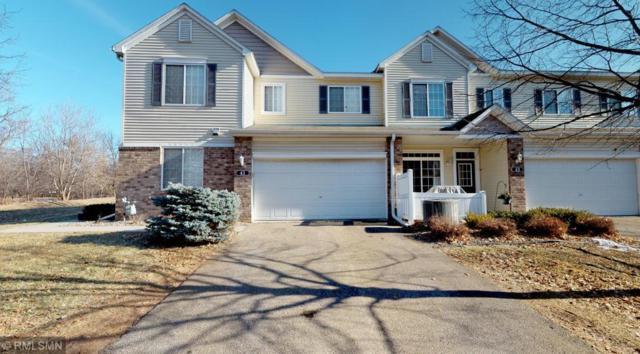 41 River Woods Drive W, Saint Paul Park, MN 55071 (#5202145) :: Centric Homes Team