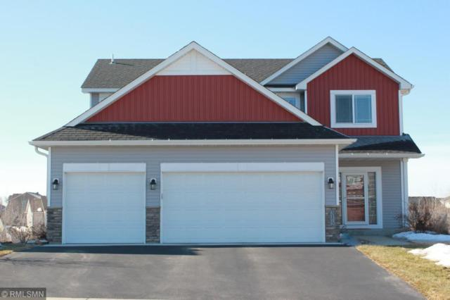 3172 191st Street W, Empire Twp, MN 55024 (#5203068) :: The Snyder Team