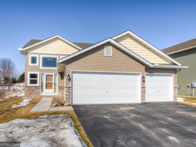 10679 51st Street NE, Albertville, MN 55301 (#5203112) :: House Hunters Minnesota- Keller Williams Classic Realty NW