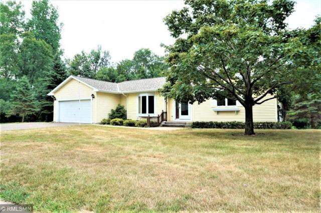 1120 Michaelson Street N, Hudson, WI 54016 (#5203264) :: The Snyder Team