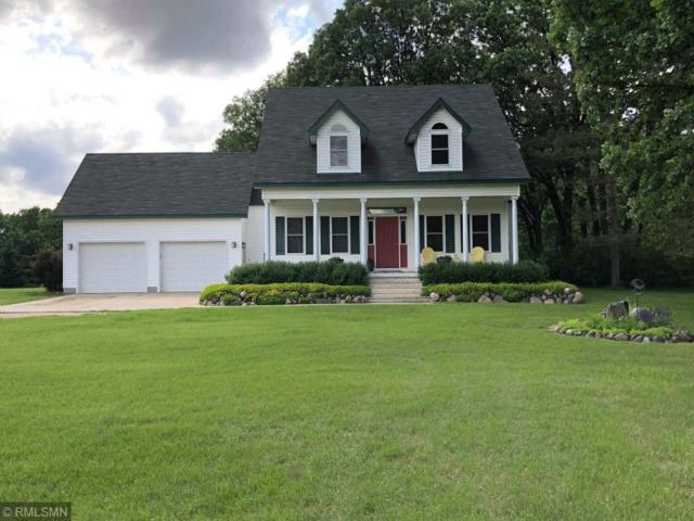 18737 221st Avenue, Verndale, MN 56481 (#5203747) :: The Hergenrother Group North Suburban