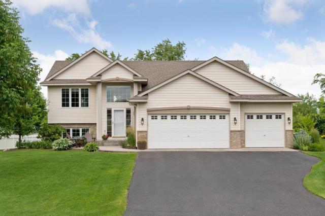 12090 74th Street NE, Otsego, MN 55330 (#5204063) :: House Hunters Minnesota- Keller Williams Classic Realty NW