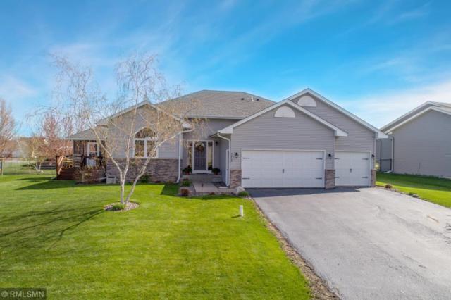 9808 41st Street NE, Saint Michael, MN 55376 (#5204403) :: House Hunters Minnesota- Keller Williams Classic Realty NW