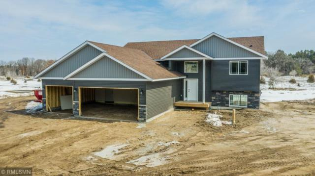 30639 105th Street, Princeton, MN 55371 (#5204448) :: The Michael Kaslow Team