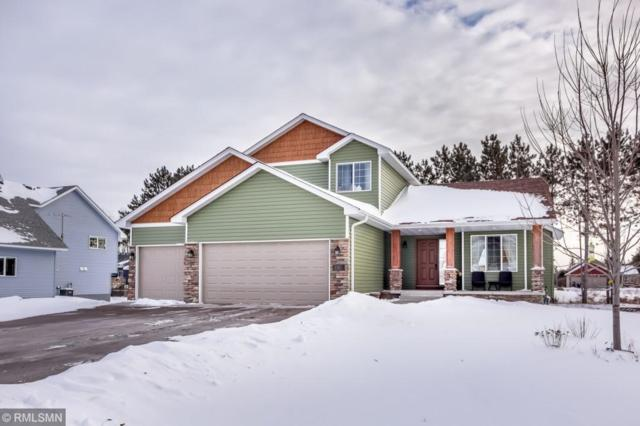 8689 Preserve Boulevard N, Chisago City, MN 55013 (#5205040) :: The Sarenpa Team