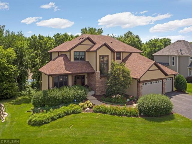 14079 Haas Lake Circle, Prior Lake, MN 55372 (#5206628) :: The Odd Couple Team