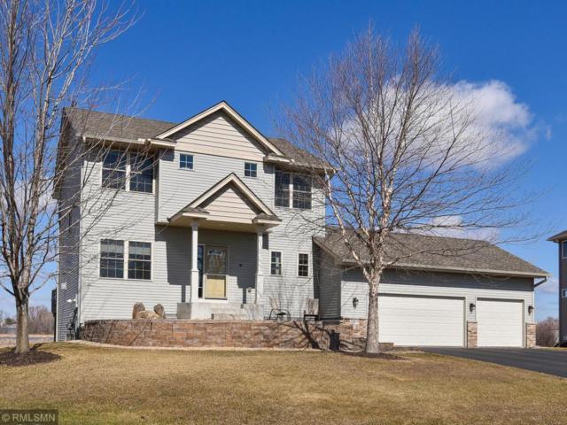22874 Rachael Drive, Rogers, MN 55374 (#5209105) :: House Hunters Minnesota- Keller Williams Classic Realty NW