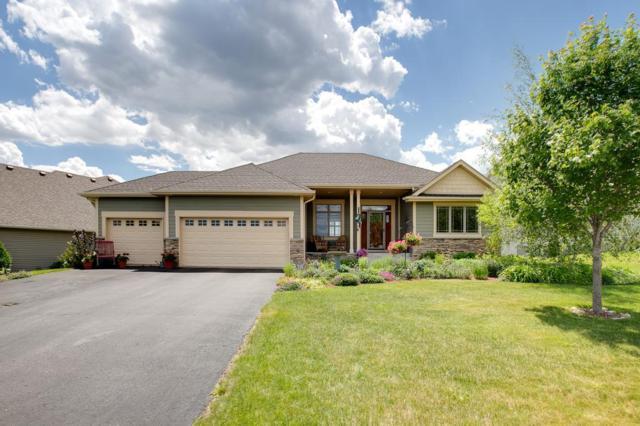 10121 93rd Street NE, Otsego, MN 55362 (#5211080) :: House Hunters Minnesota- Keller Williams Classic Realty NW