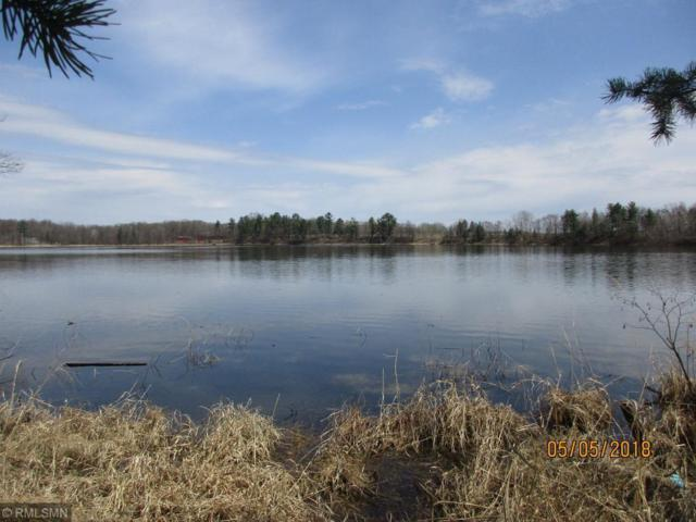 Lot 10 Pine Island Point Trail, Browerville, MN 56438 (MLS #5211503) :: The Hergenrother Realty Group