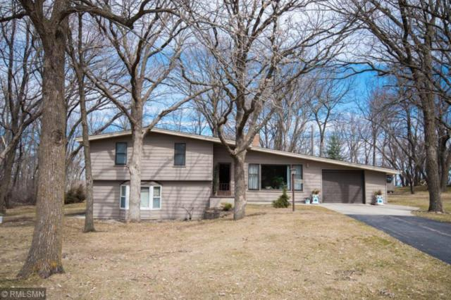39654 Yellow Pine Drive, Sauk Centre, MN 56378 (#5211689) :: House Hunters Minnesota- Keller Williams Classic Realty NW