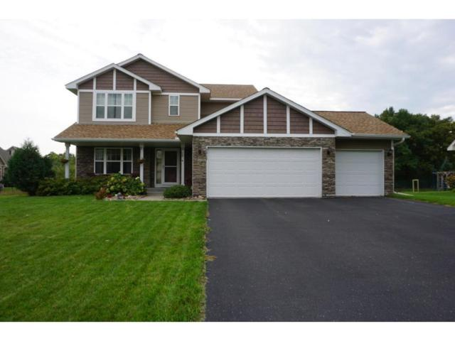9917 Hampshire Terrace N, Brooklyn Park, MN 55445 (#5212817) :: The Sarenpa Team