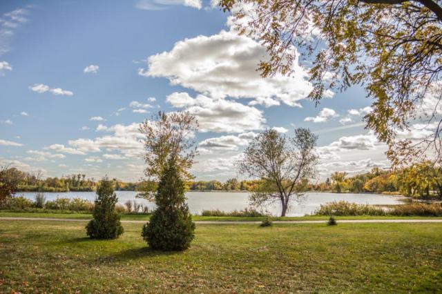 2442 W Lake Of The Isles Parkway, Minneapolis, MN 55405 (#5213593) :: The Odd Couple Team