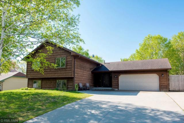 17730 Iceland Trail, Lakeville, MN 55044 (#5214393) :: MN Realty Services