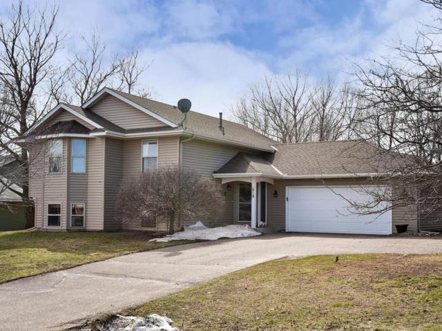 313 4th Street NW, Saint Michael, MN 55376 (#5215933) :: House Hunters Minnesota- Keller Williams Classic Realty NW