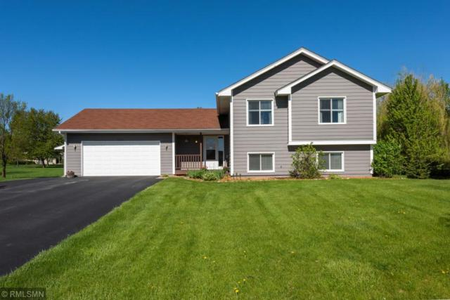 8430 Egret Court, Chanhassen, MN 55317 (#5215991) :: The Janetkhan Group