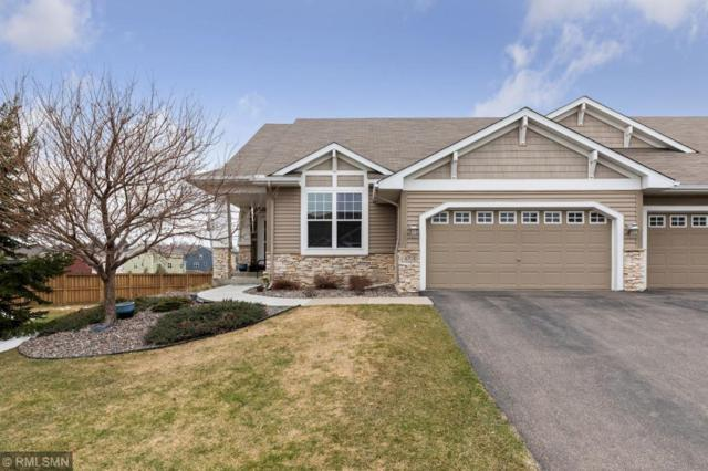 4701 Walnut Grove Lane N, Plymouth, MN 55446 (#5216244) :: The Sarenpa Team