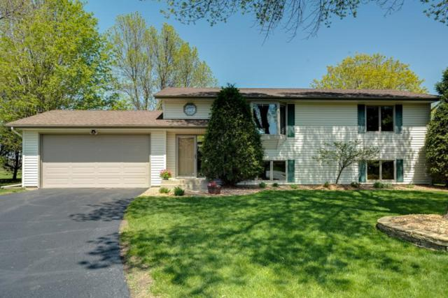 9805 Upper 205th Street W, Lakeville, MN 55044 (#5216534) :: MN Realty Services