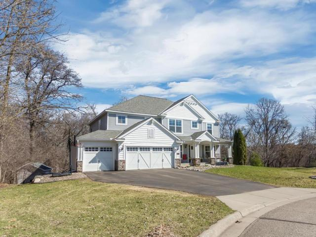6720 Timber Ridge Court S, Cottage Grove, MN 55016 (#5217340) :: The Snyder Team