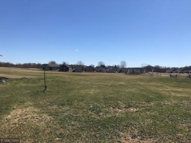 9337 Kagan Circle NE, Otsego, MN 55362 (#5217515) :: House Hunters Minnesota- Keller Williams Classic Realty NW