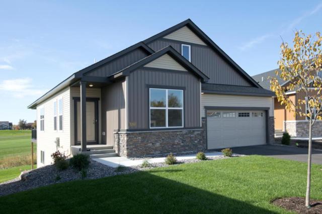 9227 Kaiser Circle NE, Otsego, MN 55362 (#5217870) :: House Hunters Minnesota- Keller Williams Classic Realty NW