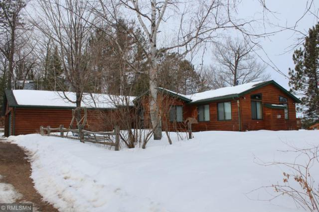 25156 Big View Road, Roosevelt Twp, MN 56450 (#5217872) :: Centric Homes Team