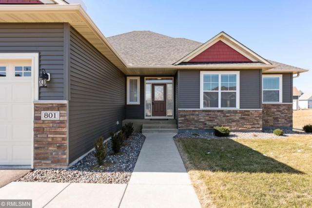 801 Watertown Avenue, Delano, MN 55328 (#5218082) :: Centric Homes Team