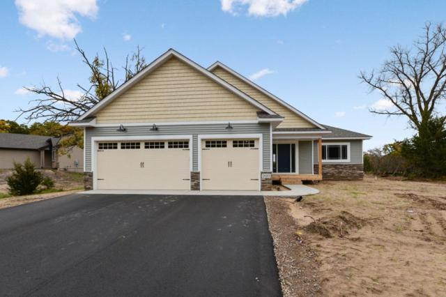 24283 143rd Street NW, Livonia Twp, MN 55398 (#5218125) :: The Preferred Home Team