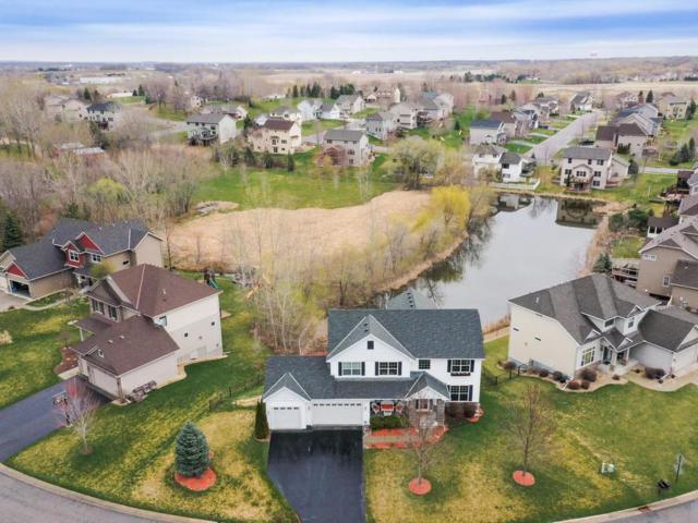 11736 47th Court NE, Saint Michael, MN 55376 (#5220282) :: House Hunters Minnesota- Keller Williams Classic Realty NW