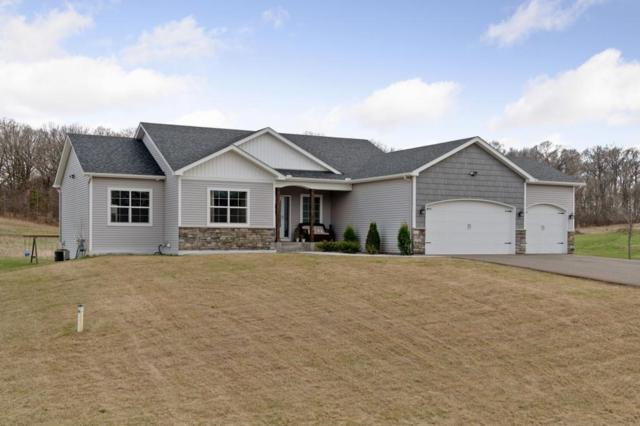 10431 275th Avenue NW, Zimmerman, MN 55398 (#5220721) :: The Odd Couple Team