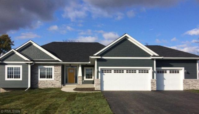 319 Limestone Road, Cannon Falls, MN 55009 (#5221541) :: House Hunters Minnesota- Keller Williams Classic Realty NW