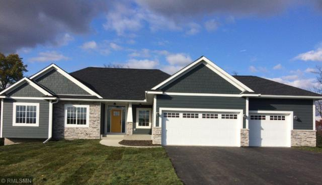 317 Limestone Road, Cannon Falls, MN 55009 (#5221622) :: House Hunters Minnesota- Keller Williams Classic Realty NW