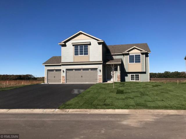 8230 119th Avenue SE, Becker Twp, MN 55319 (#5221631) :: House Hunters Minnesota- Keller Williams Classic Realty NW