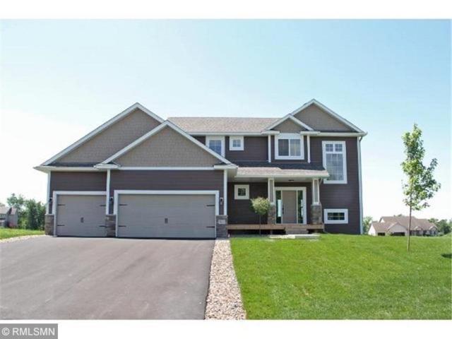 323 Limestone Road, Cannon Falls, MN 55009 (#5221682) :: House Hunters Minnesota- Keller Williams Classic Realty NW