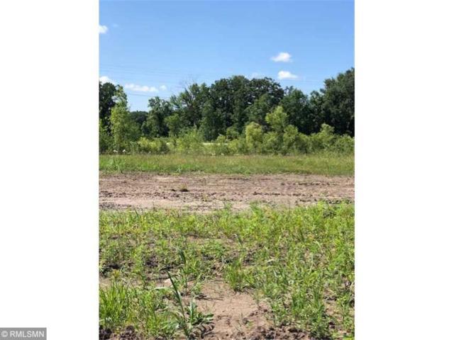 604 Lanigan Way SE, Saint Joseph, MN 56374 (#5223010) :: House Hunters Minnesota- Keller Williams Classic Realty NW