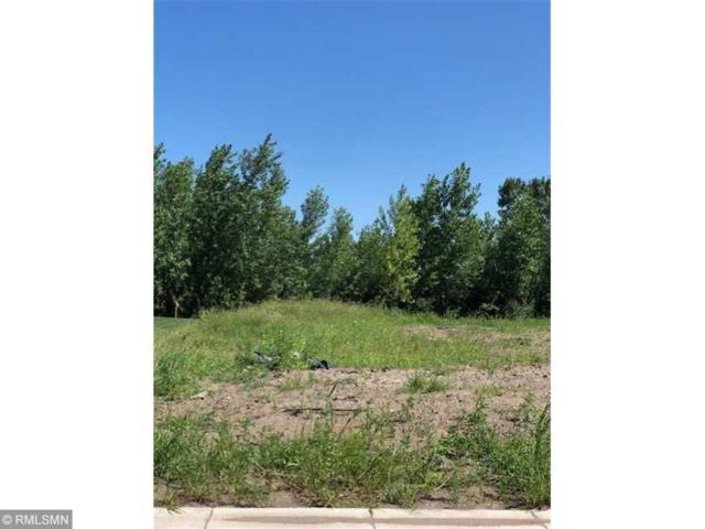607 Lanigan Way SE, Saint Joseph, MN 56374 (#5223127) :: House Hunters Minnesota- Keller Williams Classic Realty NW