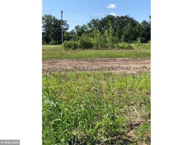 528 Lanigan Way SE, Saint Joseph, MN 56374 (#5223179) :: House Hunters Minnesota- Keller Williams Classic Realty NW