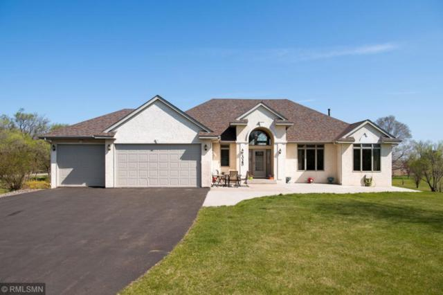 10380 266th Avenue NW, Livonia Twp, MN 55398 (#5224855) :: The Odd Couple Team