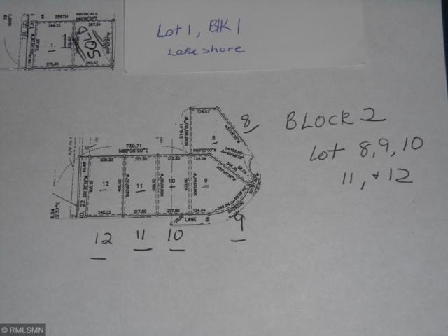 47636 259th Lane, Gaylord, MN 55334 (#5226505) :: Olsen Real Estate Group
