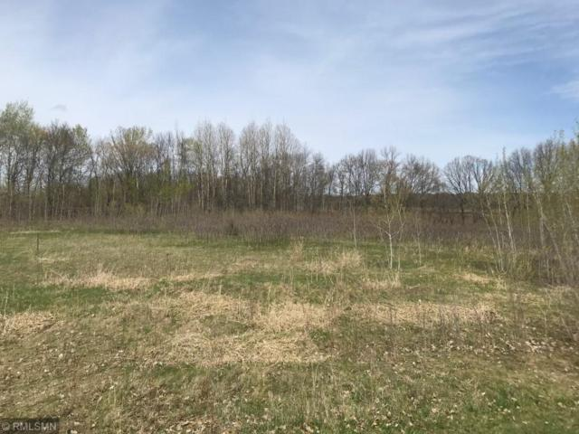 19058 Trail View Court, Albany, MN 56307 (MLS #5226988) :: The Hergenrother Realty Group