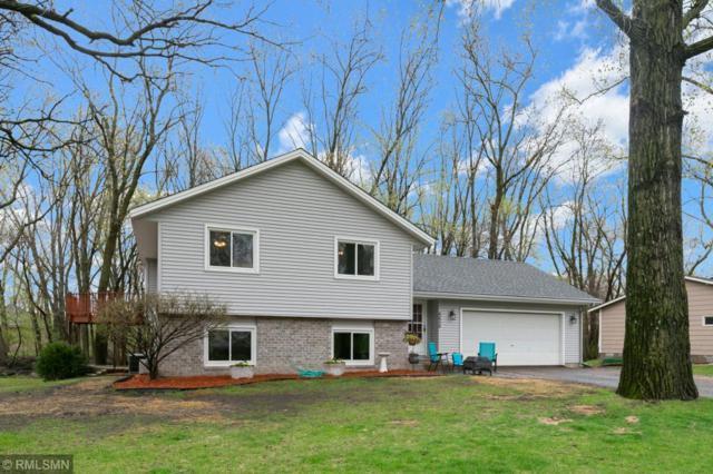 6658 Black Duck Drive, Lino Lakes, MN 55014 (#5228672) :: House Hunters Minnesota- Keller Williams Classic Realty NW